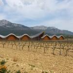 Ysios_bodega_and_vineyard_-_panoramio