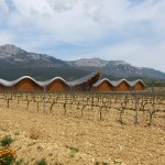 Ysios_bodega_and_vineyard_-_panoramio